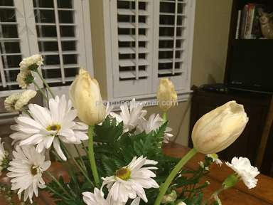 Avasflowers Daisies Flowers review 137875