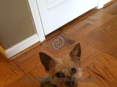 Petsmart Grooming Service review 44163