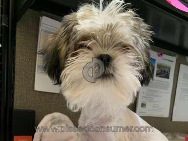 Petsmart Grooming Service review 425944