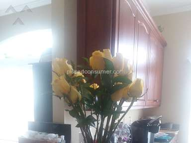 Avasflowers Roses Flowers review 265884