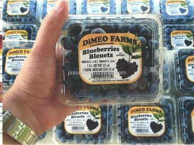 Dimeo Farms - DiMeo labels with out organic Why