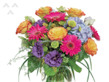Wesley Berry Flowers Arrangement review 60085