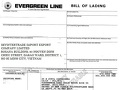Skyintertrade co. ltd / skyintertrades.com forged faked Evergreen Bill of Lading