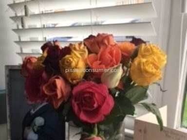 Prestige Flowers Roses Flowers review 226058