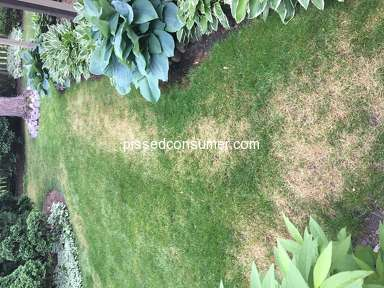 TruGreen Lawn Service review 297996