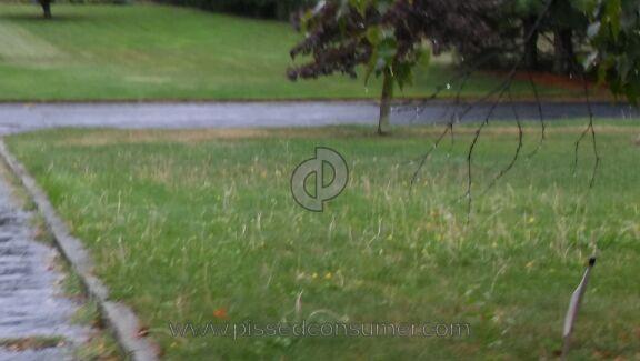 Trugreen Lawn Aeration Service