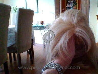 Wigsis Human Hair Wig review 266592