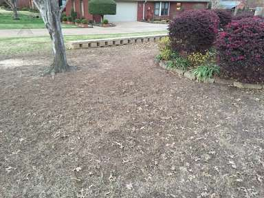 TruGreen Lawn Service review 211406