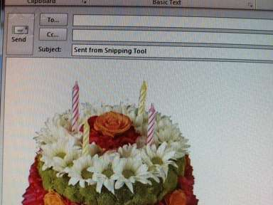 Genes Florist And Gift Baskets Flowers / Florist review 102375
