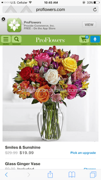 Proflowers Smiles And Sunshine Arrangement