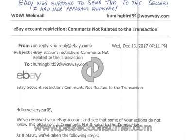 Ebay E-commerce review 249128