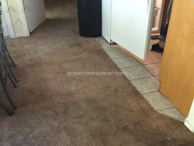 Desert Carpet Cleaners Carpet Cleaning Service review 139465
