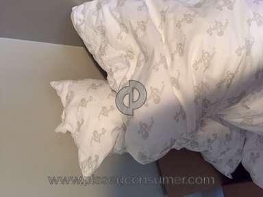 MyPillow Pillow review 388202