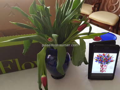 Proflowers Flowers review 114675