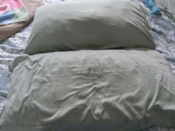 Mypillow Pillow