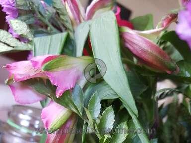 Justflowers Flowers / Florist review 342440