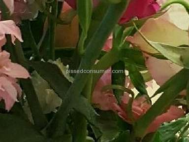 From You Flowers - Bouquet Review from Oklahoma City, Oklahoma