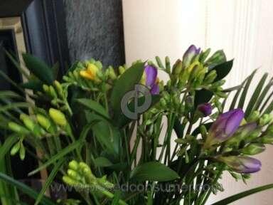 Prestige Flowers Flowers review 118879
