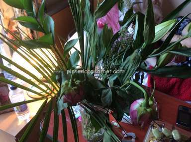 Prestige Flowers Flowers review 66685