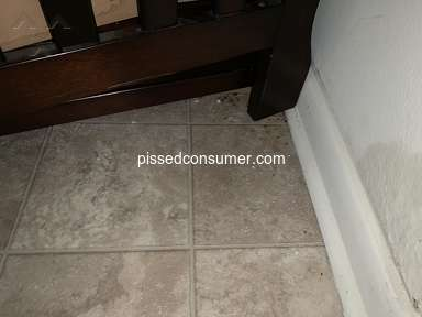 Morgan Properties Sanitary Conditions review 384774