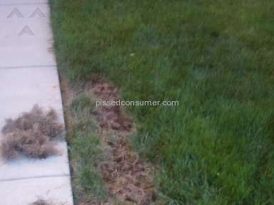 Trugreen Trucomplete Lawn Service review 170744