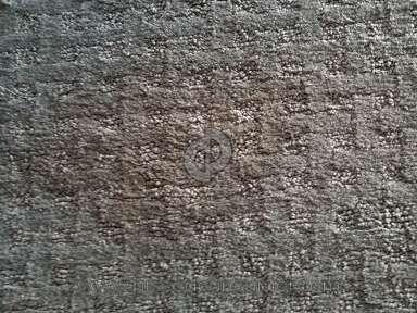 Shaw Floors Carpet review 350052