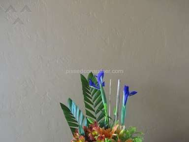 Wesley Berry Flowers Flowers review 40789