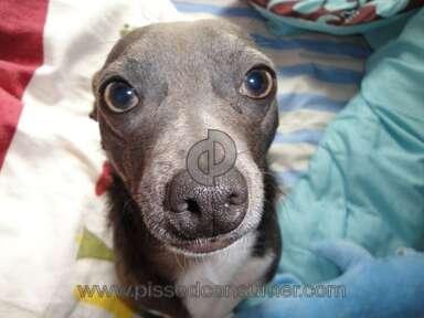 Petsmart Purina One Dog Food review 387692