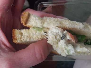 Giant Eagle - Chicken Sandwich Review from New York, New York