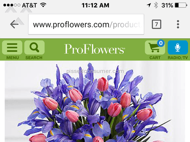 Proflowers Spring Blooms Arrangement review 134577