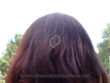 Regis Salons Hair Coloring review 848