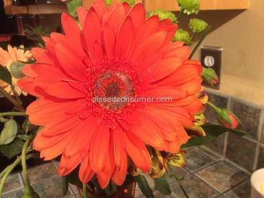 Ftd Flowers review 165320