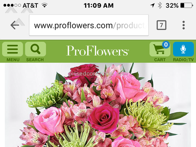 Proflowers - Spring Blooms Arrangement Review from The Woodlands, Texas