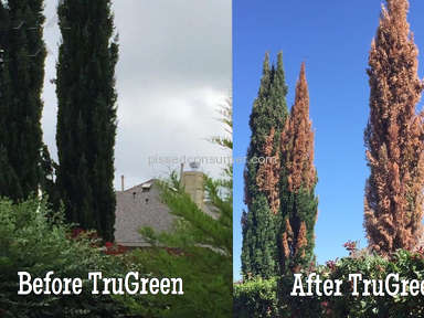 Trugreen - Tree Killers and Poor Comany
