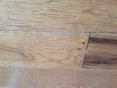 Stanley Steemer Floor Cleaning Service review 201654