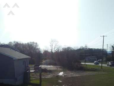 Exit Realty - Half house half swamp!