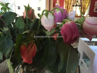 1800flowers Roses Flowers review 132423