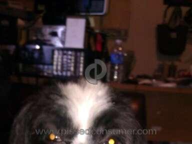 Petsmart Grooming Service review 42459