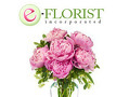 EFlorist - E-Florist would not process my order