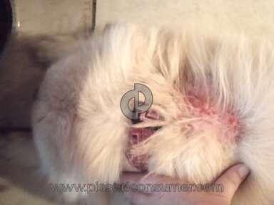 Merial Pet Medicine and Veterinary Clinics review 47387