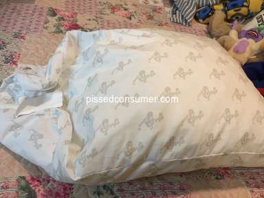 Mypillow Standard Classic Pillow review 358360
