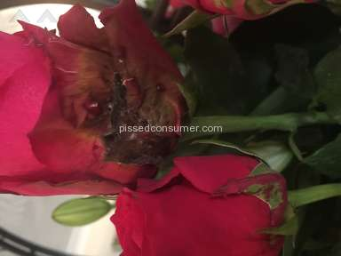 Prestige Flowers - Awful flowers and worse customer care