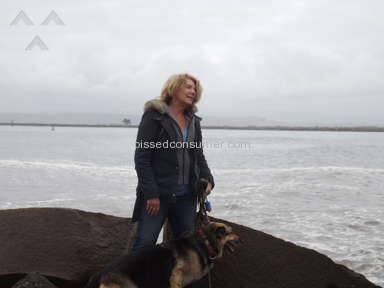 Westside German Shepherd Rescue - Not always what it appears...