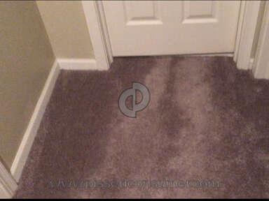Luna Flooring Carpet Installation review 468551