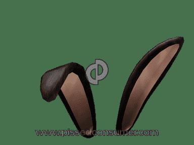 Roblox - Bunny Ears 2017