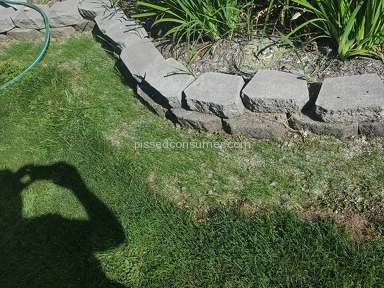 Scotts Lawn Repair Mix review 228462