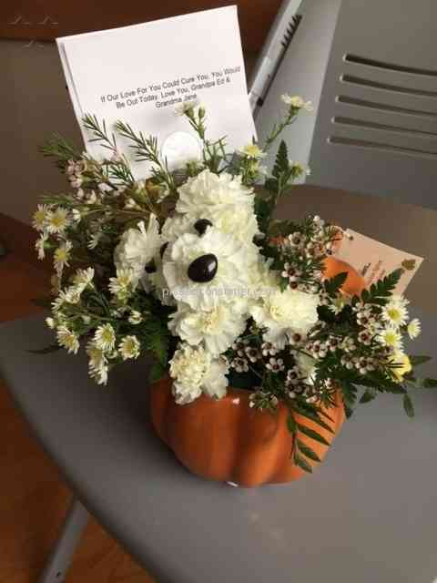 1800Flowers - Didn\'t deliver quality of what was ordered Sep 27 ...