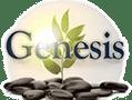 Genesis Ibogaine Center Mexico