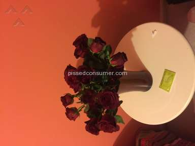 ProFlowers Flowers review 114957