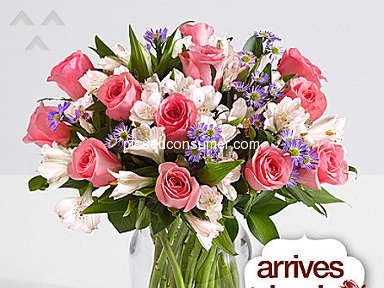 ProFlowers Arrangement review 290496
